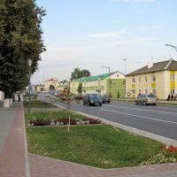 Lenin street, Береза