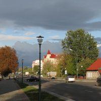 На улице Ленина. Осень. (Lenin street. Autumn.), Береза