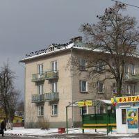 Северный городок / Severny gorodok, Береза