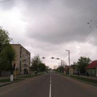 Улица Ленина, Береза Картуска