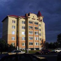 Перед грозой (Before the storm), Береза Картуска