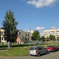 Северный городок, во дворе дома №71 (In the courtyard of Severny gorodok, 71), Береза Картуска