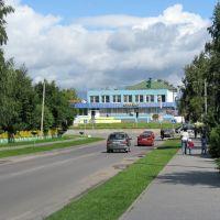 ул. Красноармейская (Krasnoarmeyskaya street), Береза Картуска