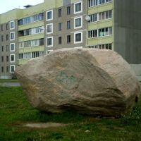 Вялікі камень, Береза Картуска