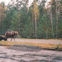 Begegnung an der Fernstrasse M10, Городище