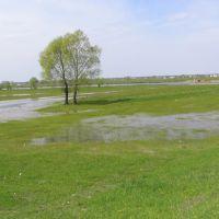 Horyń river near Dawidgródek, Давид-Городок
