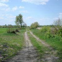 Старая дорога из Домачева в Нейдорф 28.04.2008, Домачево