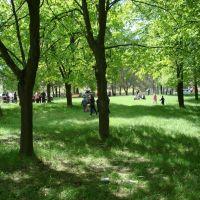 Сквер  9 мая 2008г., Домачево