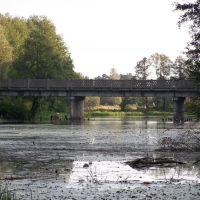 Мост через старое русло р.Буг 28.10.2008, Домачево