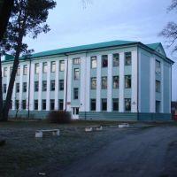 10.12.2008, Домачево
