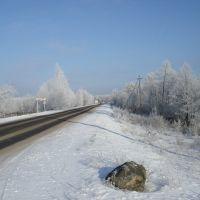 Зимние красоты после 25-ти град. мороза в Домачево 6.01.2009, Домачево