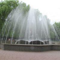 фонтан в дрогичине, Дрогичин