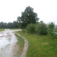 Дорога в черте города., Жабинка