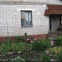 Цветник у дома., Ивацевичи