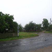 Дорога к дому А.Н. Голуба., Ивацевичи