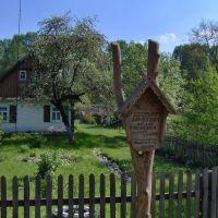 Дом художника Дорошевича, Каменец