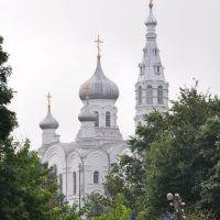 м.Каменець. Білорусія. Свято-Симонівська церква 1914 р., Каменец