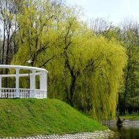 В парке Суворова, Кобрин
