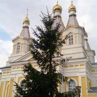Свято Александро-Невский собор, Кобрин
