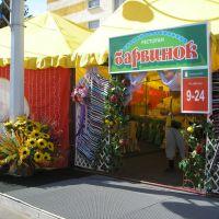 Kobryn Harvest Festival (12), Кобрин