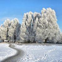Зима, Лунинец