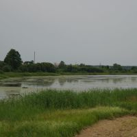 Водохранилище на реке Ведьма, Ляховичи