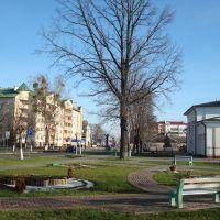 Near the library of Malorita, Малорита