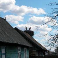 ul. Kalinowskiego, Пружаны
