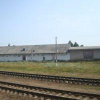 Станция Богушевская, Богушевск