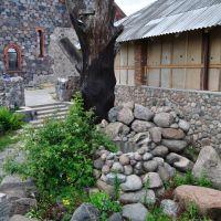 Колодец за Костёлом Рождества Девы Марии. A well behind the Birth of the Blessed Virgin Mary parish, Браслав