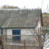 Весенний разлив реки Дриса. Верхнедвинск. Dries River spill. Verkhnedvinsk., Верхнедвинск