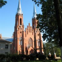 Church of the Holiest Trinity in Vidzy, Видзы