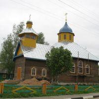 Vidzy.The Orthodox Church., Видзы