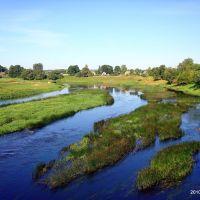 Река, Дисна