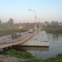 Пантонный мост через Днепр в г. Дубровно, Дубровно