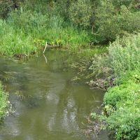 Фото р.Оболь с моста в Езерище, Езерище
