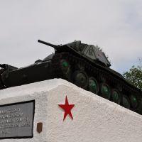 Т-70, Езерище