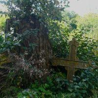Ancient grave / Lepel / Belarus, Лепель