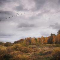 Осень, Новополоцк