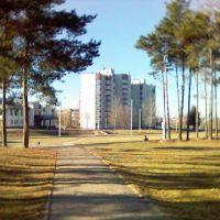 Банк, Орша