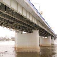 Мост праз Дняпро, Орша
