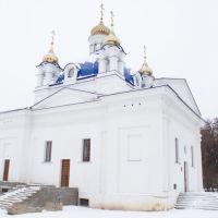 Храм Расства Багародзіцы, Орша