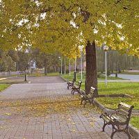 Orsha, town-park, Орша