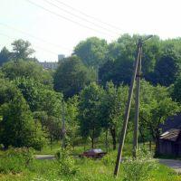 Холмы над Полотой, Полоцк