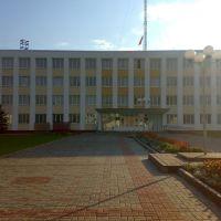 Административное здание, Россоны