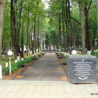 Памятник, Россоны