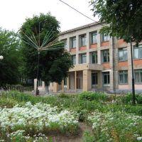 Школа, Сенно