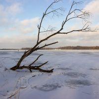 Сенненское озеро. Зима, Сенно