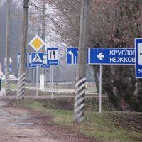 Обилие дорожных знаков, Толочин