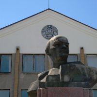 Ленин жив!, Толочин